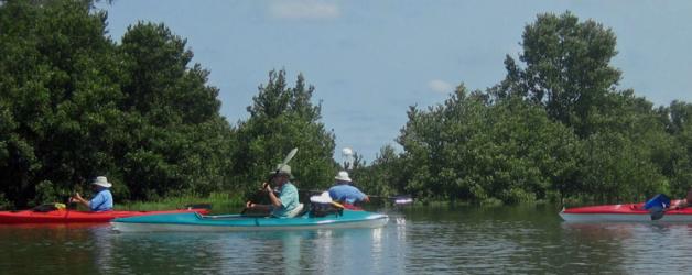 Friends of the Lower Suwannee & Cedar Keys National Wildlife Refuges